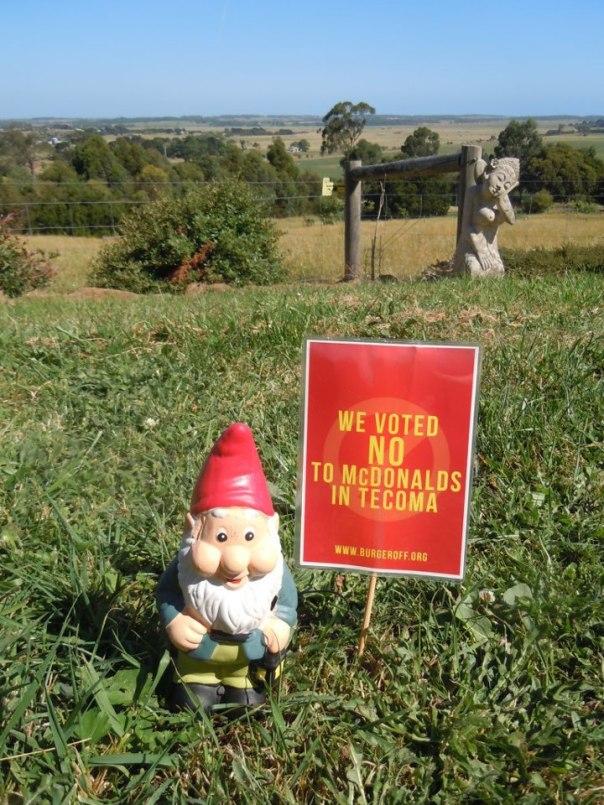 Gnome Field